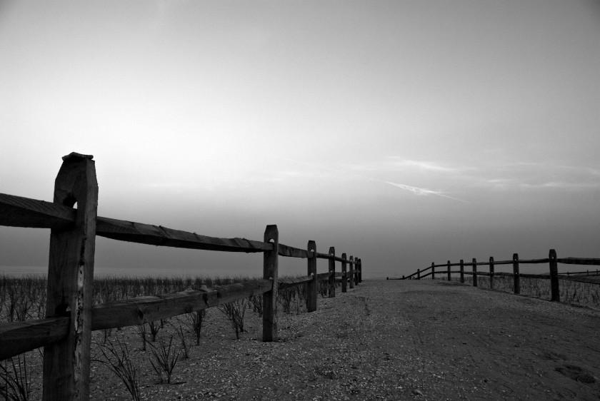 BW Fence